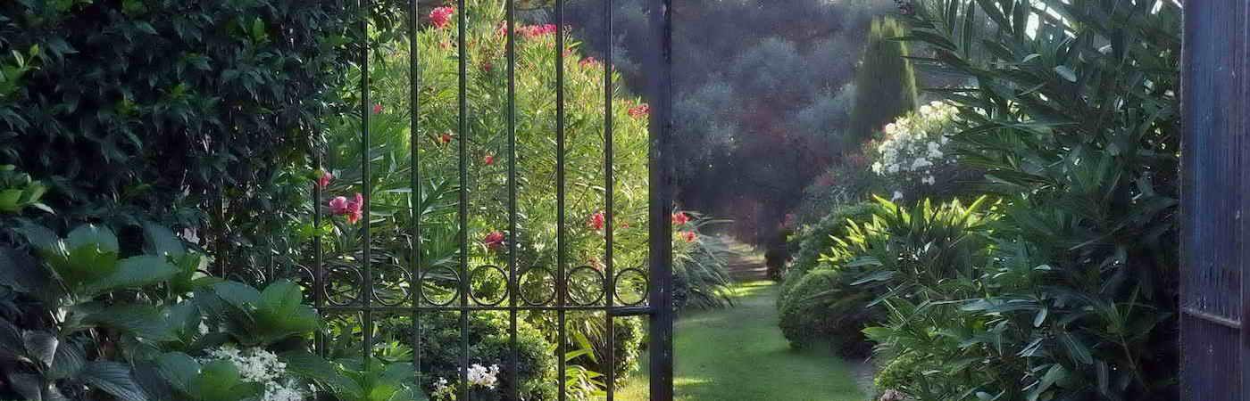 Jardins et olivier en Corse. Domaine de Vignale
